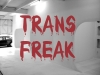 transfreak2ok
